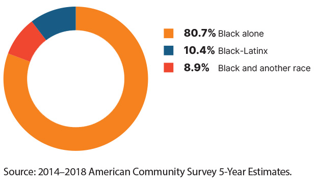 Pie chart: 80.7%-Black alone / 10.4%-Black-Latinx / 8.9%-Black and another race